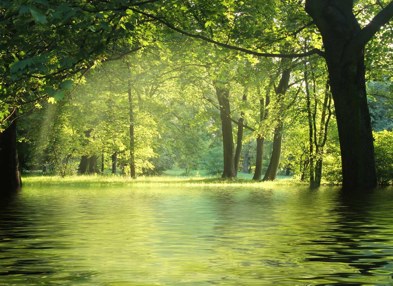 Office4Green - ökologisch sinnvoll